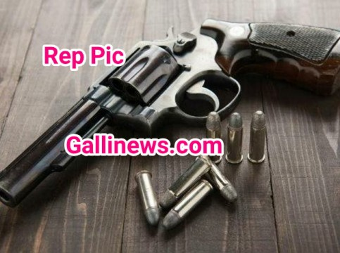 1 Pistol 16 Live Cartridge Recover By D N Police Station