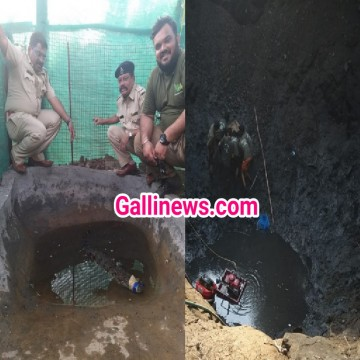 Baby Crocodile Rescued from artificial  Pond in Thane