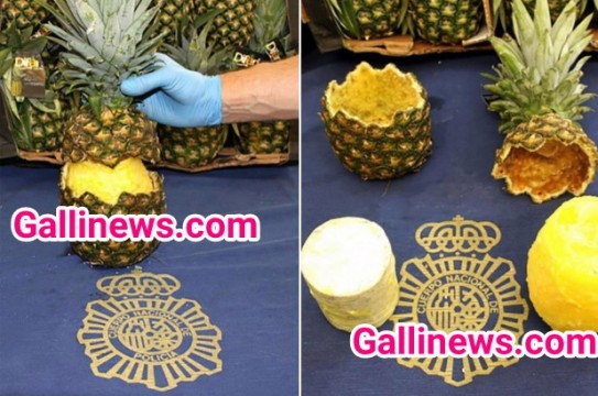 Pineapple may 67 Kg Cocaine Smuggling at Market in Madrid