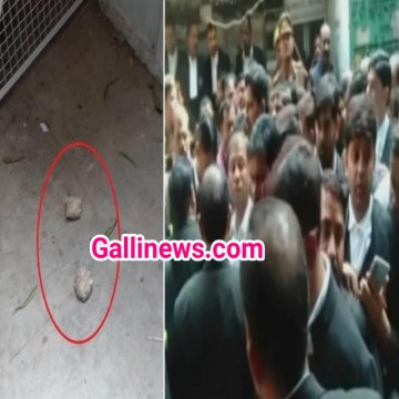 Crude Bomb Attack in court at Lucknow 2 lawyerd injured