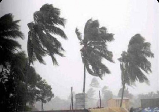 Cyclone Gaja to hit Tamil Nadu Coastal District on High Alert