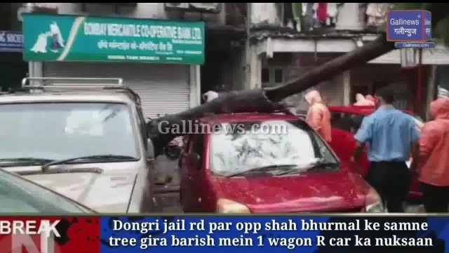 Tree Fall on Car at Dongri Jail Road