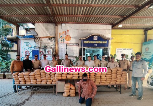 Ganja 345 Kg Worth Rs 51 82 Lakhs Seized by Sakinaka Police From Chandivali