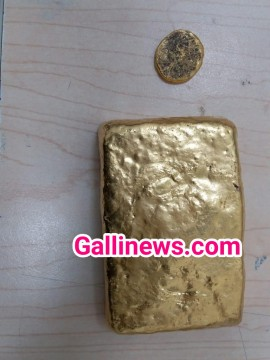 Gold smuggling in Paste form concealed in pouch seized by Coustoms Department Hyderabad Airport