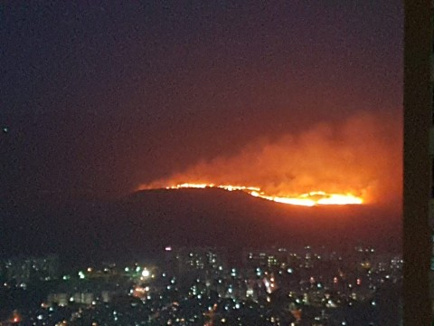 Huge Fire at Aarey Colony forest Goregaon East