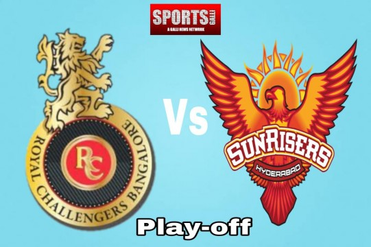 MI vs DC Qualifier 2 IPL 2020 Sunrisers Hyderabad Beat Royal Challengers Bangalore