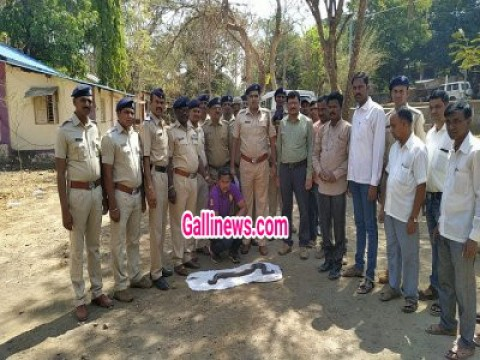 Indian Boa Snake seized and sale karne aaya hua aaropi arrest at Kalyan