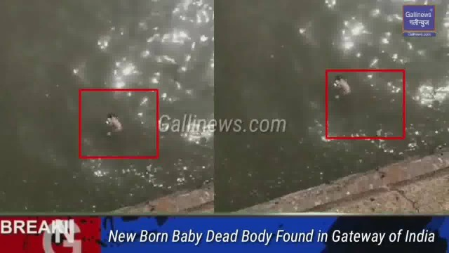 New Born Baby Dead Body Found in Gateway of India