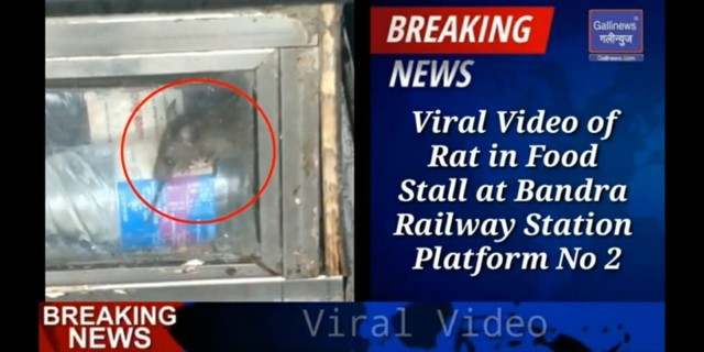 Viral Video of Rat in Food Stall at Railway Station