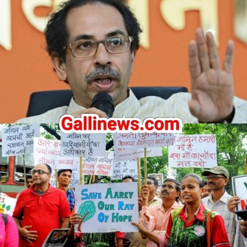 Save Aarey Protest main arrest hue logon ko case withdraw kiya jaye orderd CM Uddhav Thackeray