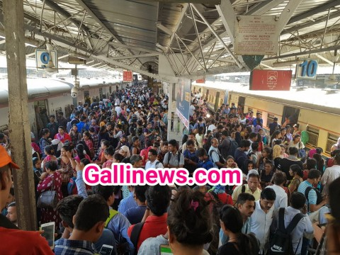 Trans Harbour Local Train Service affected due to OHE issue at Navi Mumbai