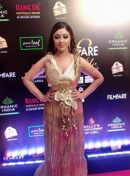 Golden girl! iampayalghosh  stuns at the Filmfare Glamour AndStyle Awards. PayalGhosh