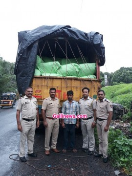 1511691 Rupay ke Illegal  Liquor, Gutkha Seized, 1 Person Arrested At Palghar