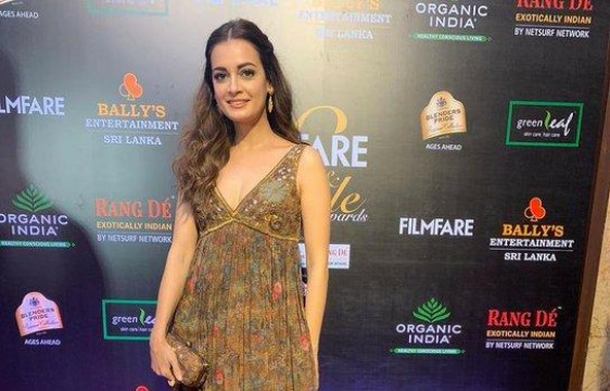 diamirza official looks breathtaking at the Filmfare Glamour AndStyle Awards 2019