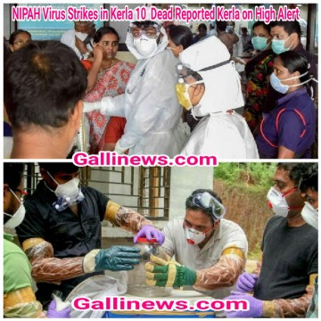 NIPAH Virus Strikes in Kerla 10  Dead Reported Kerla on High Alert