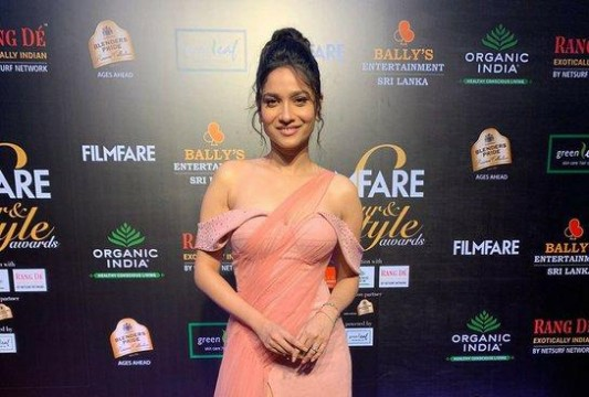 anky 1912 looks stunning at the Filmfare Glamour AndStyle Awards 2019