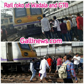 Train Roko Andolan between wadala and GTB