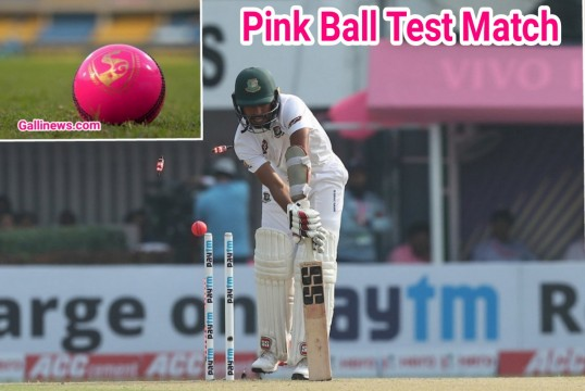 Pink Ball Day and Night First Test Match Started in Kolkatta