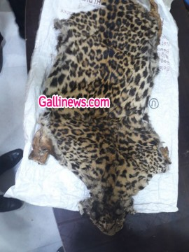 Panther ki khal bechane aaye 3 arrested by Ulhasnagar Crime Unit